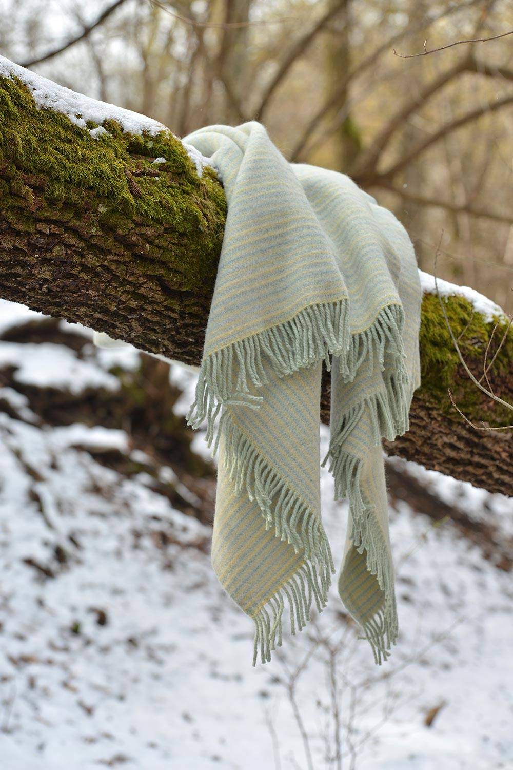 mint colored wool blanket on a branch in the winter forest