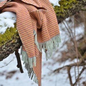 wool blanket on a branch in the winter forest